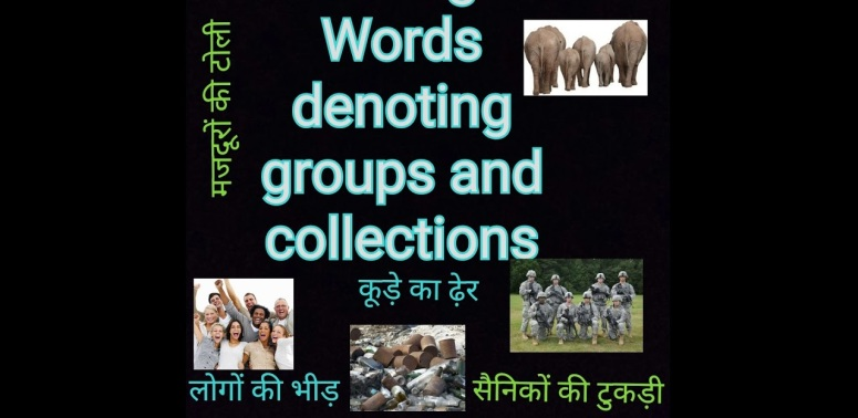 Words Denoting Collection